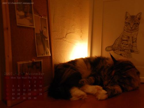 2007年11月カレンダー1024_768