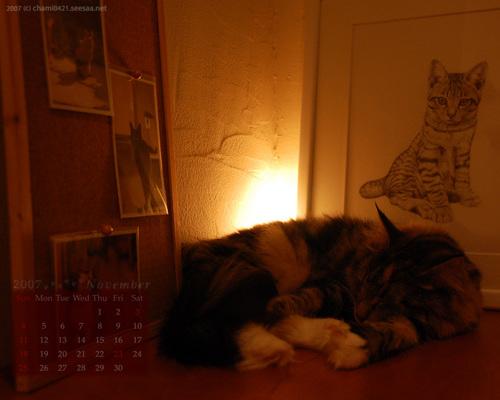 2007年11月カレンダー1280_1024_
