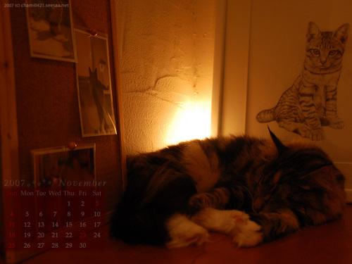 2007年11月カレンダー1400_1050