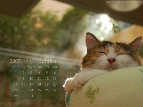 2007年10月カレンダー1024_768